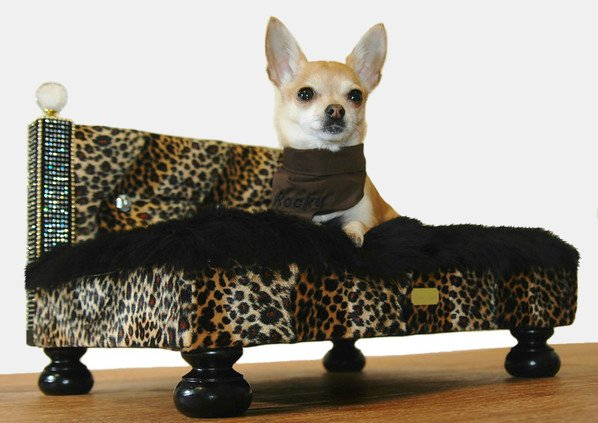 Rocky Noble Luxury Dog Furniture at Harrods by Lush Pups