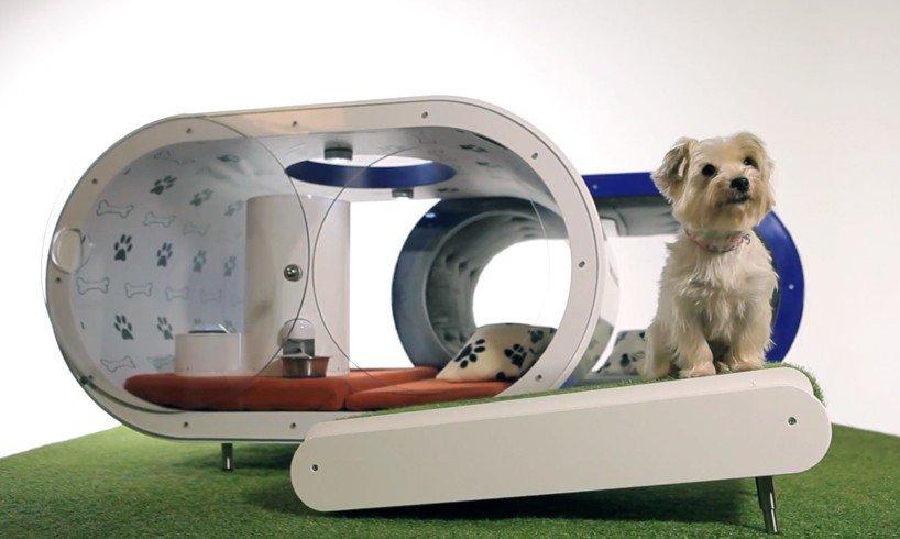 Luxuryretail_samsung-dream-doghouse
